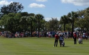 Tiger Woods golfing at the Honda Classic at PGA National