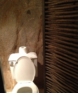 Toilet at El Farallon in Cabo, Mexico