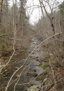 Natural Bridge Park in Virginia