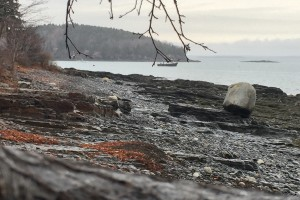 Maine: Bar Harbor on a Whim
