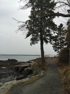 Path Along the Ocean, Bar Harbor, Maine