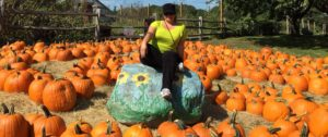 Gina Pacelli in Russell Orchards' Pumpkin Patch