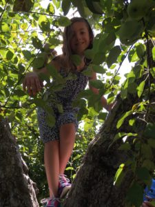 Girl in a Tree at Russell Orchards