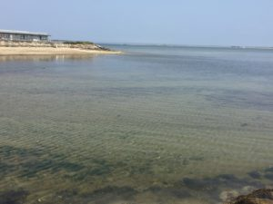 Provincetown Water