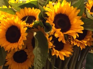Sunflowers at Pike Place Market