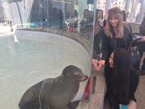 Dina and Joanna Check out a Seal, Boston Aquarium