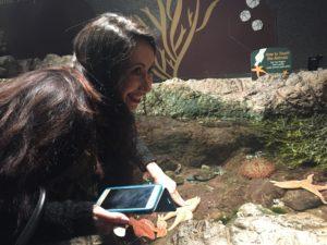Joanna Touches a Starfish, Boston Aquarium