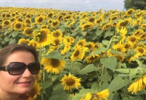 Gina Pacelli, Sunflower Field, Colby Farm