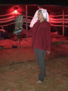 Elaine, Falcon, Desert, UAE