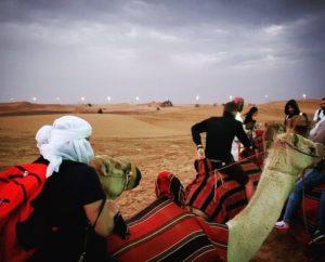 Gina Pacelli, Camel Rides, UAE