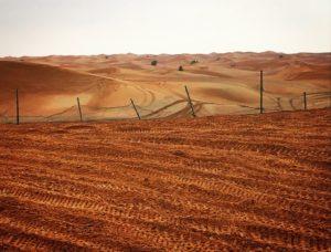Red Sand Desert, UAE